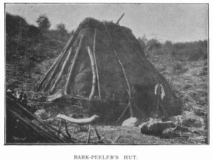 Old photograph of a bark peeler's hut