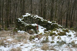 Ruins of a woodsmen's hut at Grass Paddocks