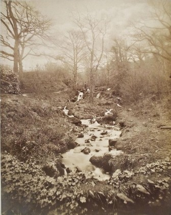 Late nineteenth century photograph of Wynlass Beck running through the wilderness garden