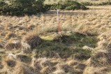 A small turf-covered clearance cairn at Eden House cairnfield