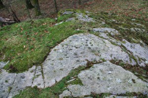 Rock art panel at Allan Bank, Grasmere
